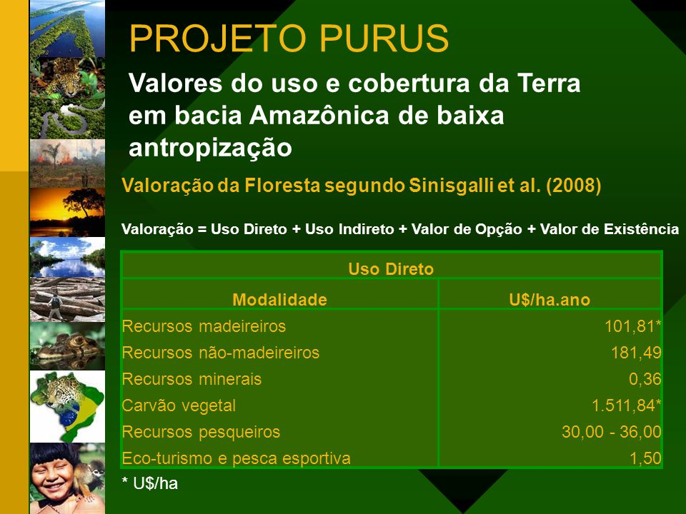 PROJETO PURUS Valores do uso e cobertura da Terra em bacia Amazônica de baixa antropização. Valoração da Floresta segundo Sinisgalli et al. (2008)