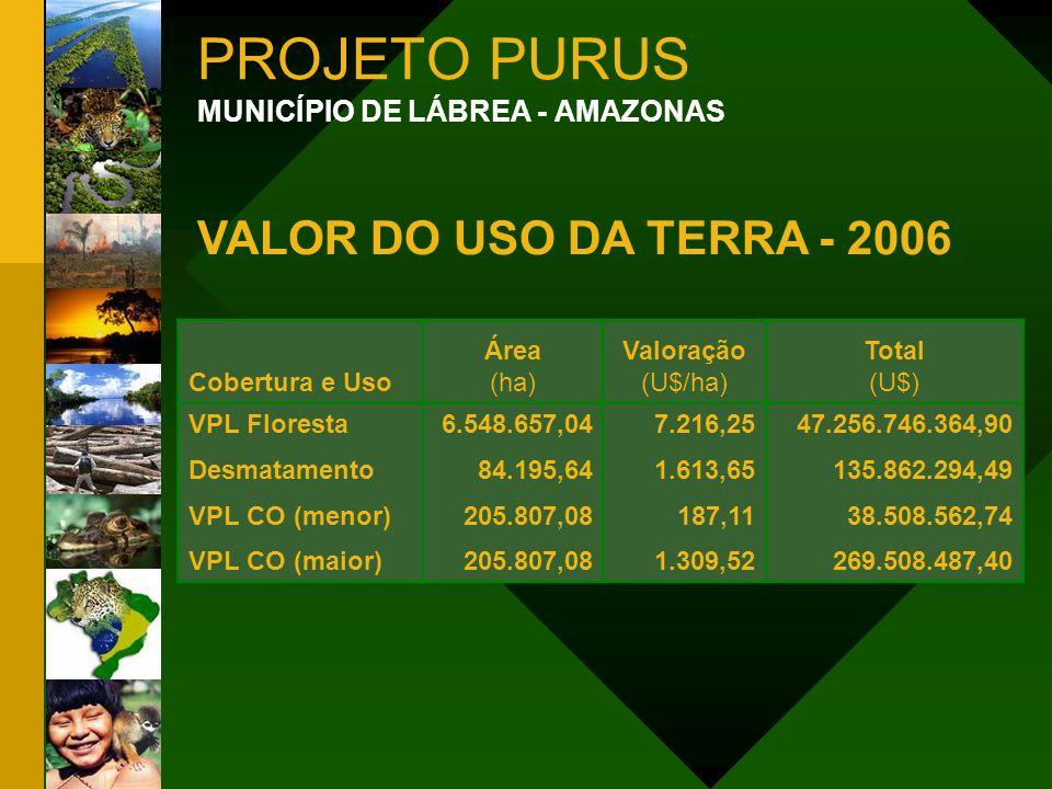 PROJETO PURUS VALOR DO USO DA TERRA - 2006