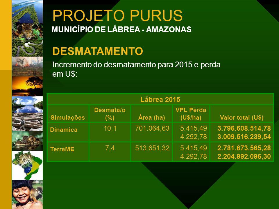 PROJETO PURUS DESMATAMENTO MUNICÍPIO DE LÁBREA - AMAZONAS