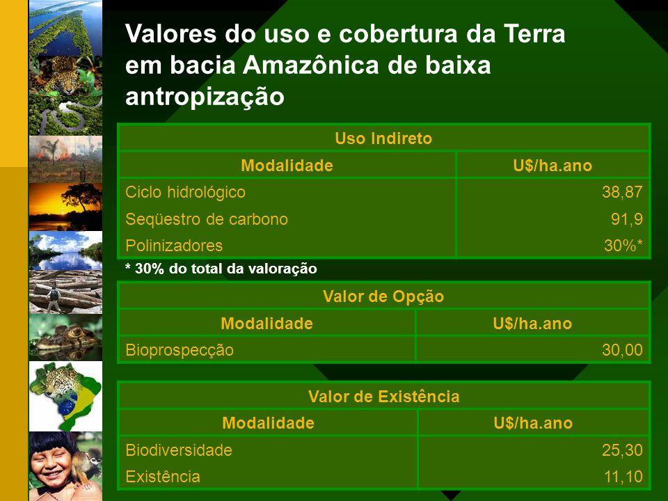 Valores do uso e cobertura da Terra em bacia Amazônica de baixa antropização