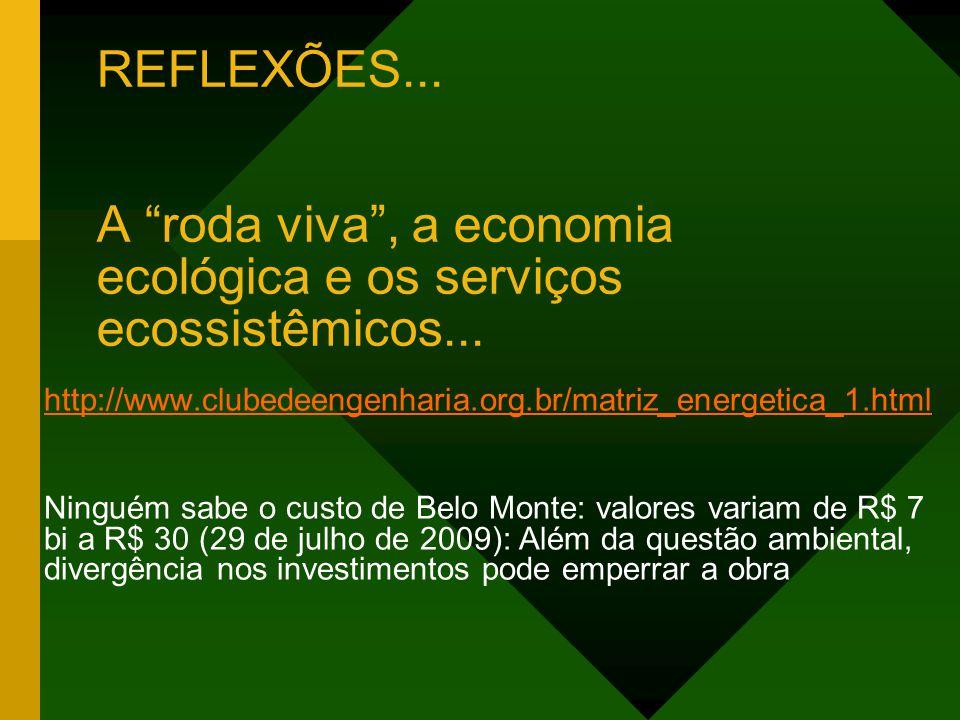 REFLEXÕES... A roda viva , a economia ecológica e os serviços ecossistêmicos...