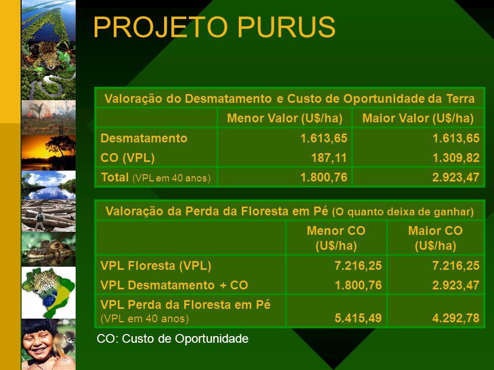 PROJETO PURUS Valoração do Desmatamento e Custo de Oportunidade da Terra. Menor Valor (U$/ha) Maior Valor (U$/ha)