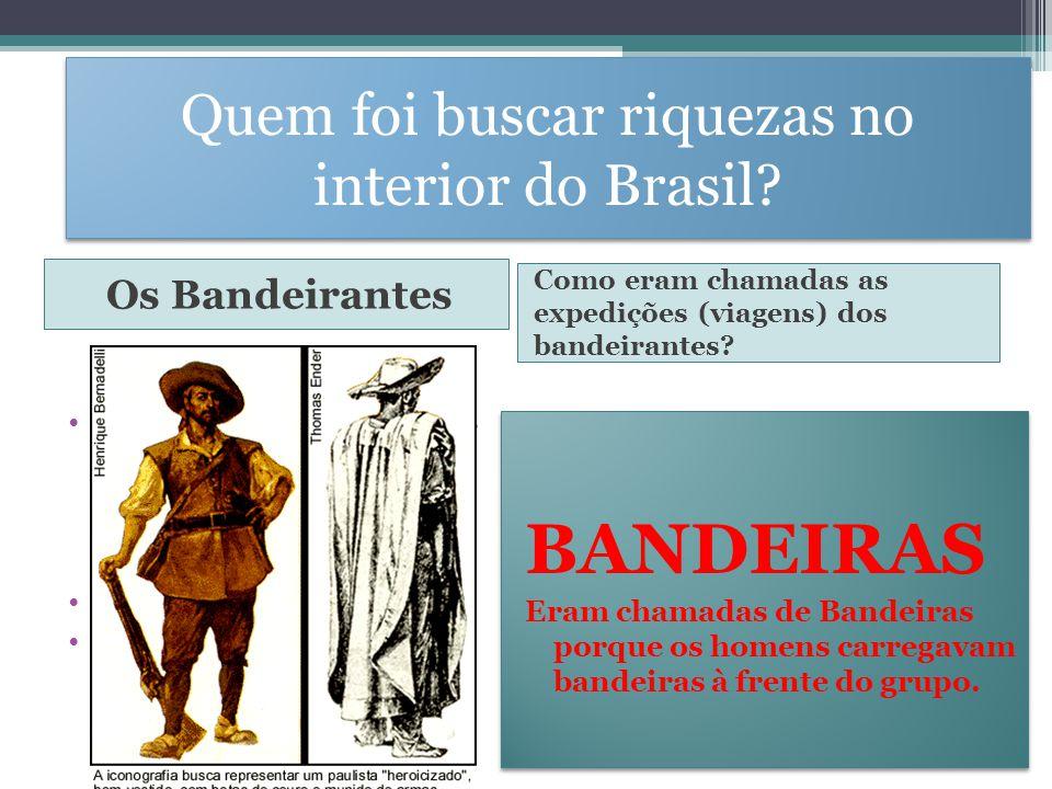 Quem foi buscar riquezas no interior do Brasil