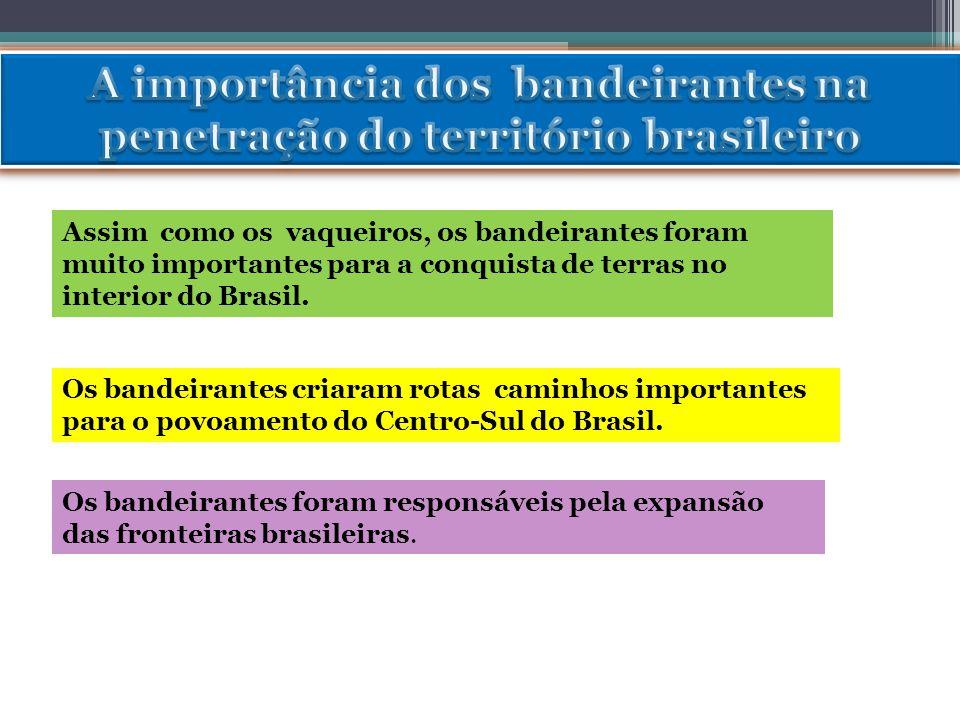 A importância dos bandeirantes na penetração do território brasileiro
