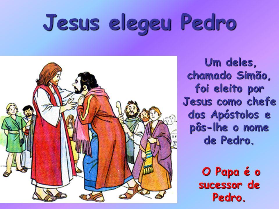 O Papa é o sucessor de Pedro.