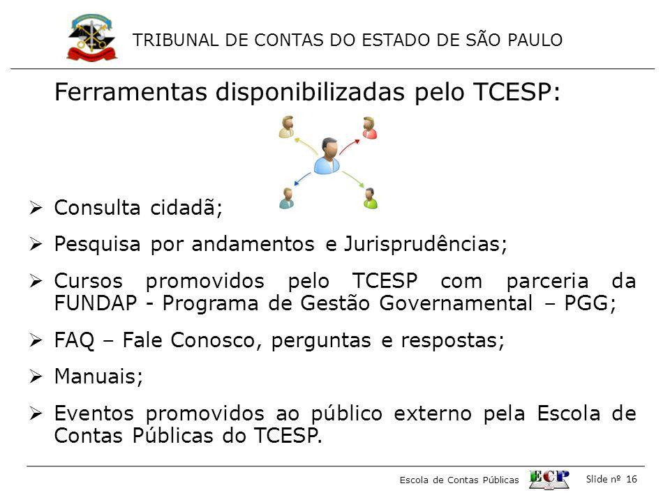 Ferramentas disponibilizadas pelo TCESP: