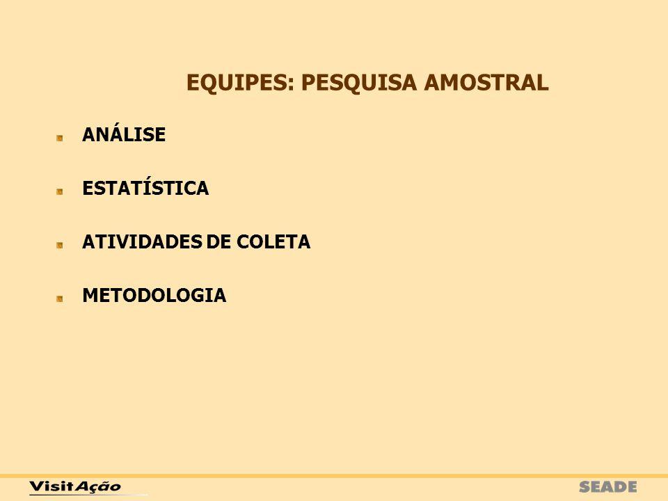 EQUIPES: PESQUISA AMOSTRAL