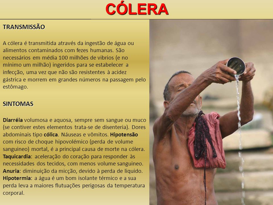 CÓLERA TRANSMISSÃO SINTOMAS