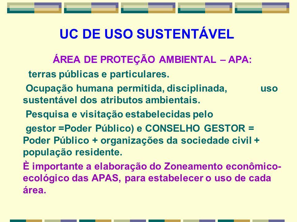 UC DE USO SUSTENTÁVEL ÁREA DE PROTEÇÃO AMBIENTAL – APA: