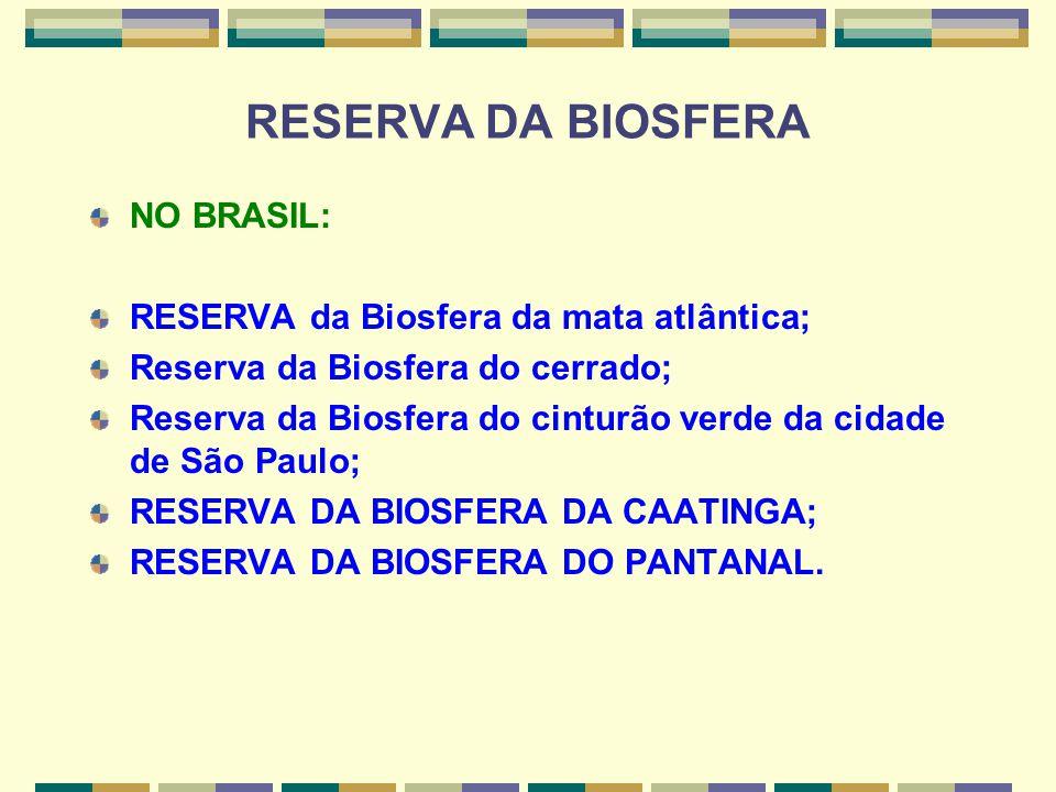 RESERVA DA BIOSFERA NO BRASIL: RESERVA da Biosfera da mata atlântica;