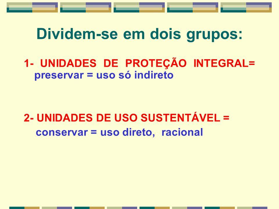 Dividem-se em dois grupos: