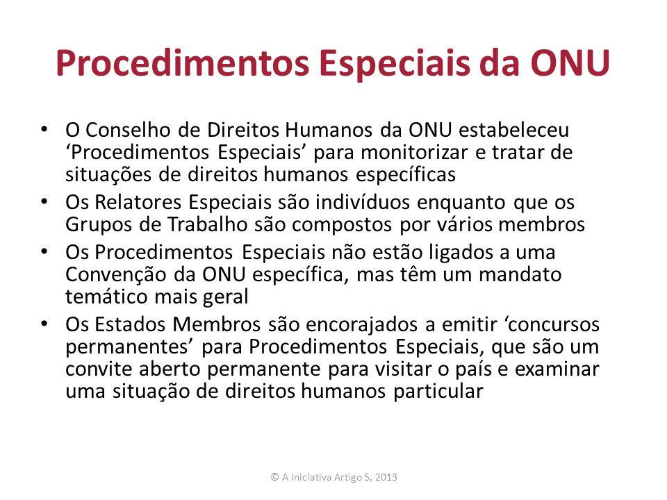 Procedimentos Especiais da ONU