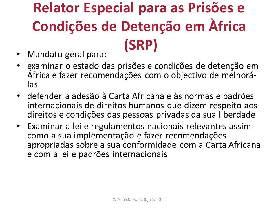 Relator Especial para as Prisões e Condições de Detenção em Àfrica (SRP)