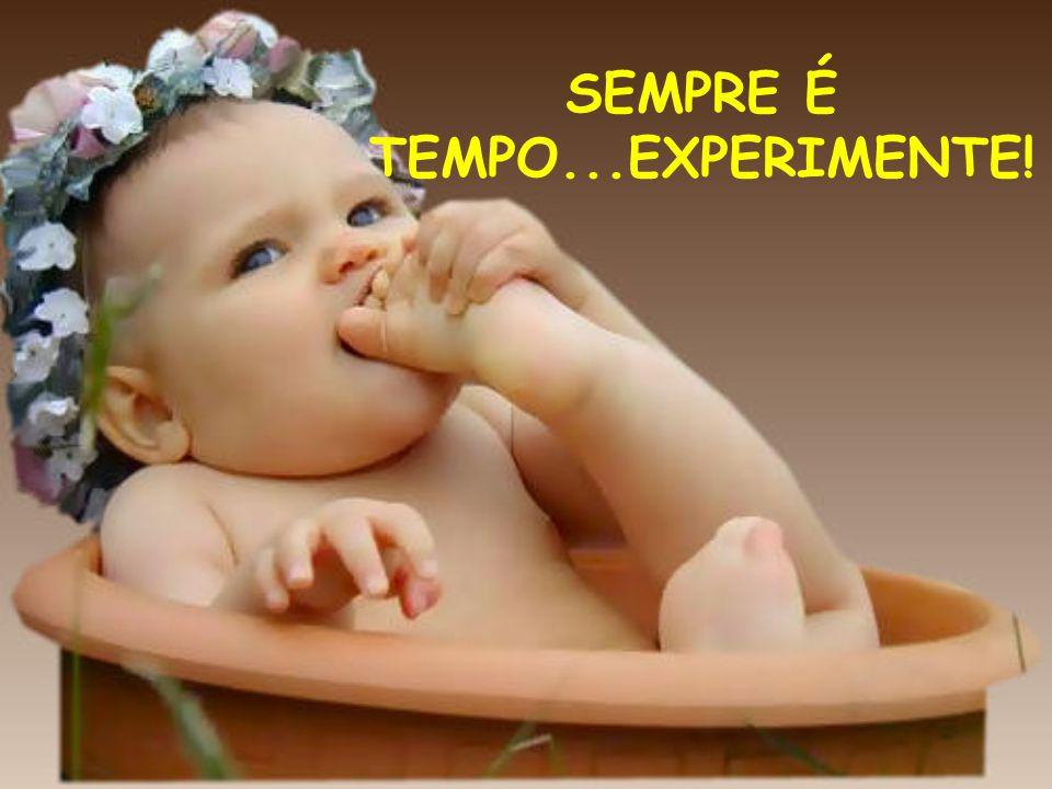 SEMPRE É TEMPO...EXPERIMENTE!