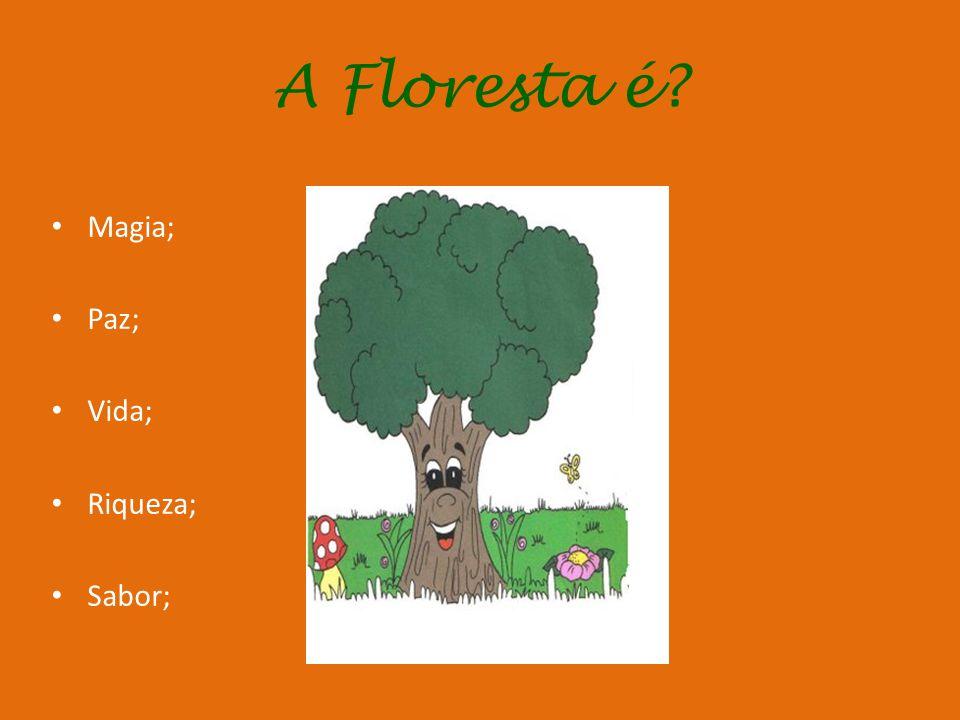 A Floresta é Magia; Paz; Vida; Riqueza; Sabor;