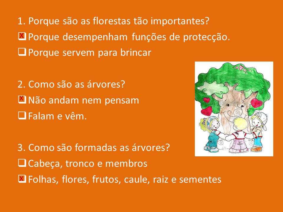 1. Porque são as florestas tão importantes