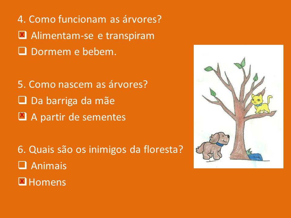 4. Como funcionam as árvores Alimentam-se e transpiram