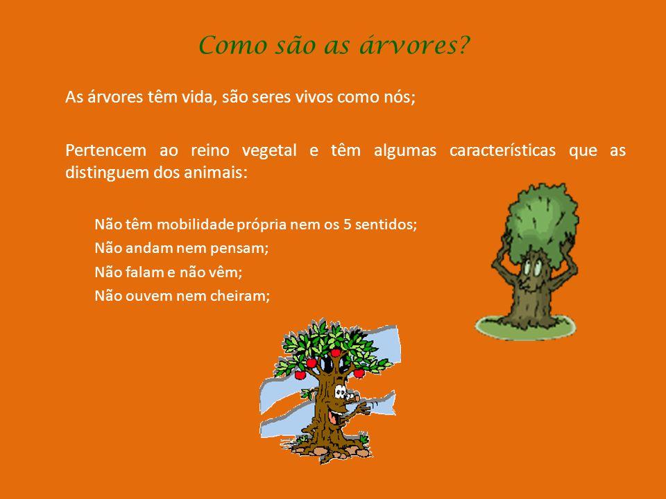 Como são as árvores As árvores têm vida, são seres vivos como nós;
