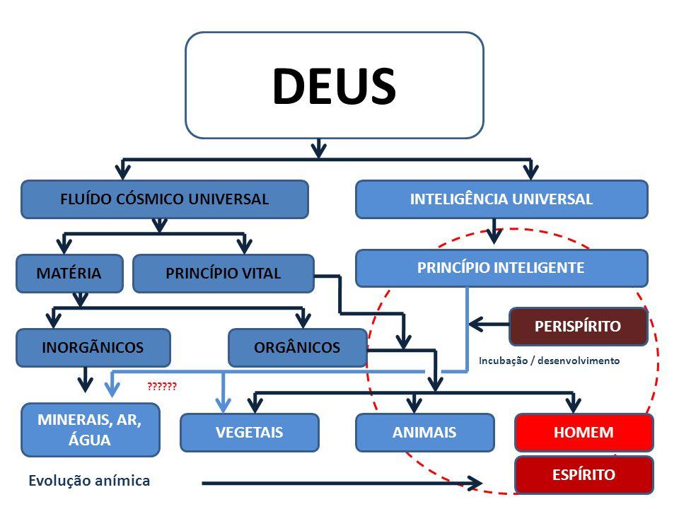 FLUÍDO CÓSMICO UNIVERSAL INTELIGÊNCIA UNIVERSAL PRINCÍPIO INTELIGENTE