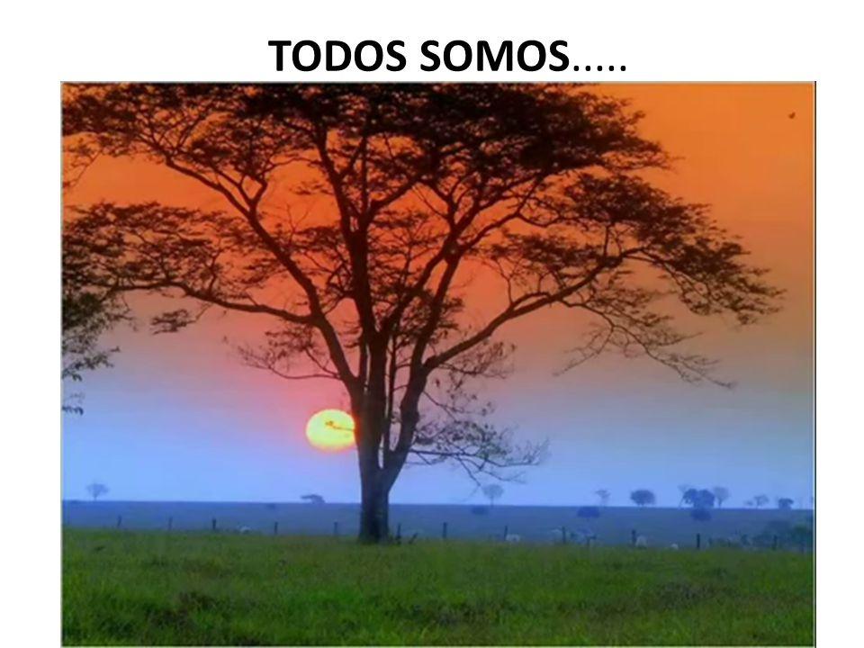 TODOS SOMOS.....