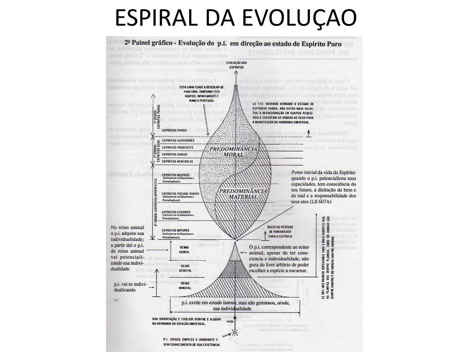 ESPIRAL DA EVOLUÇAO