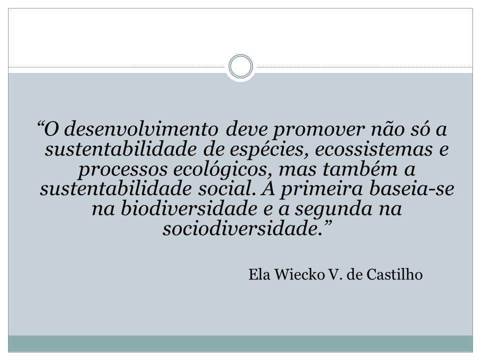 Ela Wiecko V. de Castilho