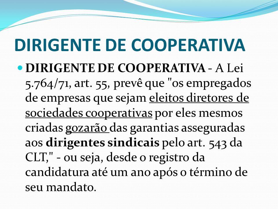 DIRIGENTE DE COOPERATIVA