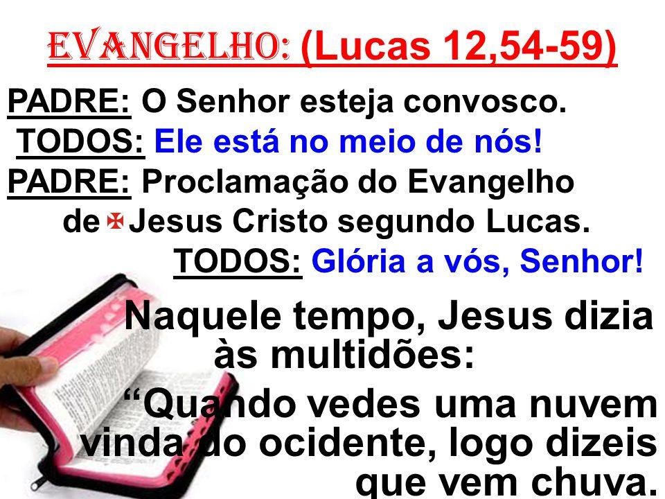 Naquele tempo, Jesus dizia às multidões: