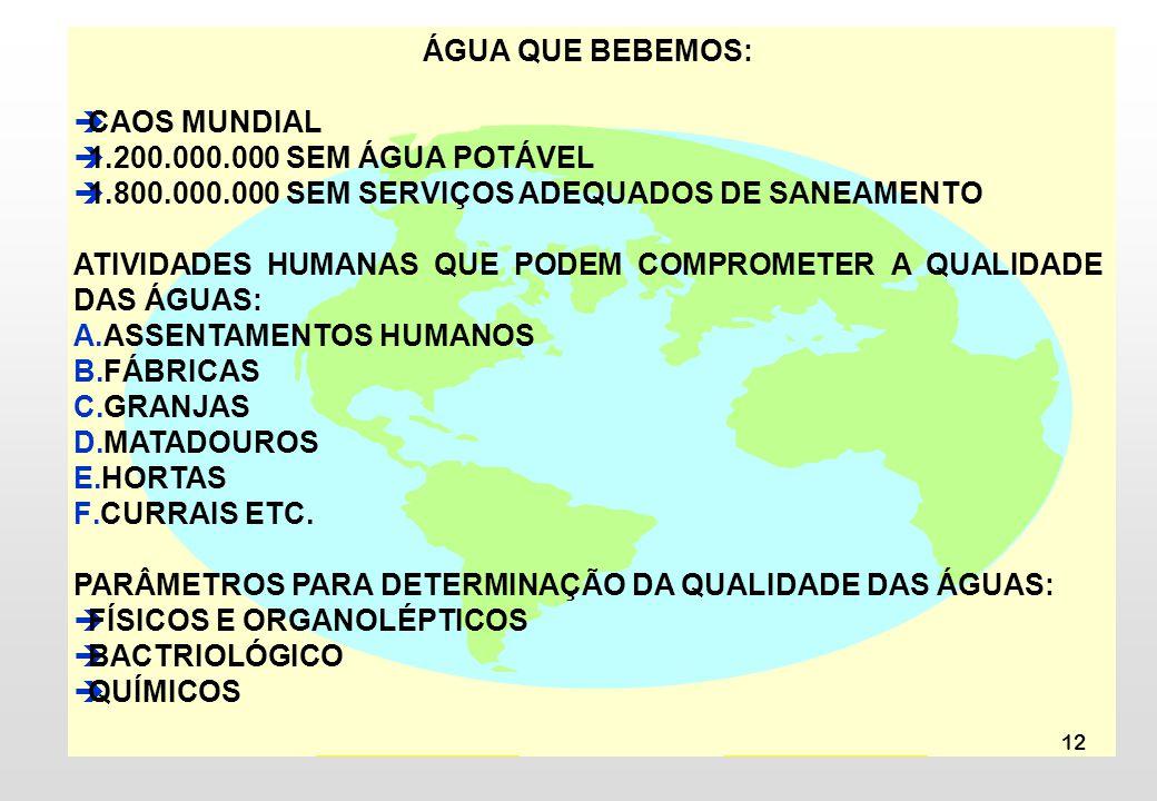 ÁGUA QUE BEBEMOS: CAOS MUNDIAL. 1.200.000.000 SEM ÁGUA POTÁVEL. 1.800.000.000 SEM SERVIÇOS ADEQUADOS DE SANEAMENTO.