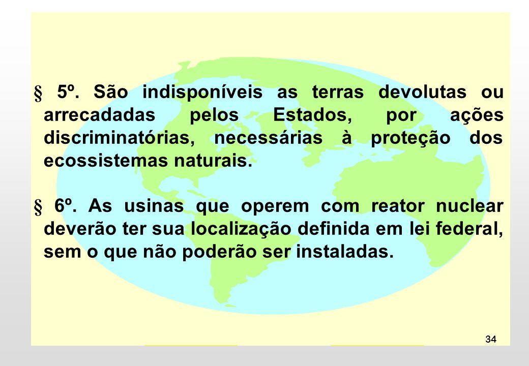 § 5º. São indisponíveis as terras devolutas ou arrecadadas pelos Estados, por ações discriminatórias, necessárias à proteção dos ecossistemas naturais.