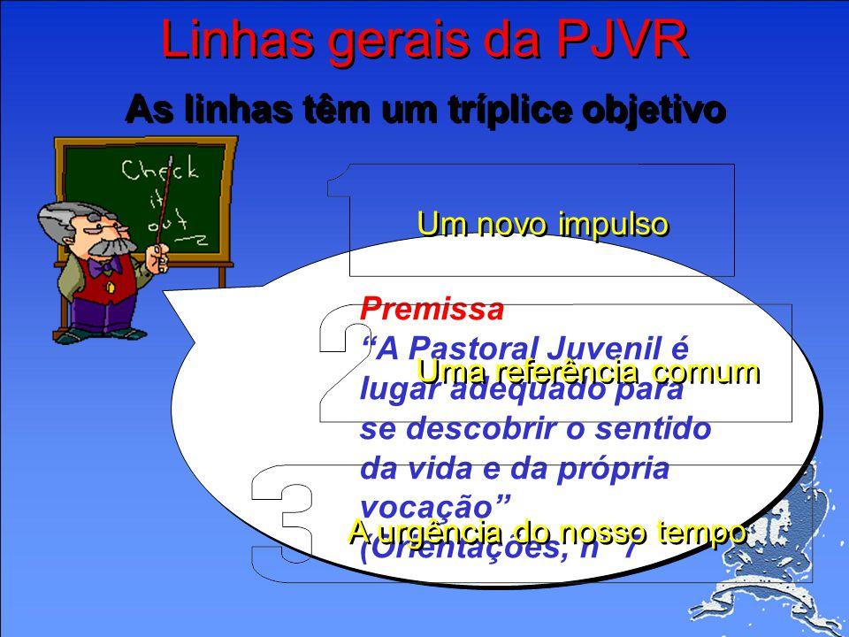Linhas gerais da PJVR As linhas têm um tríplice objetivo