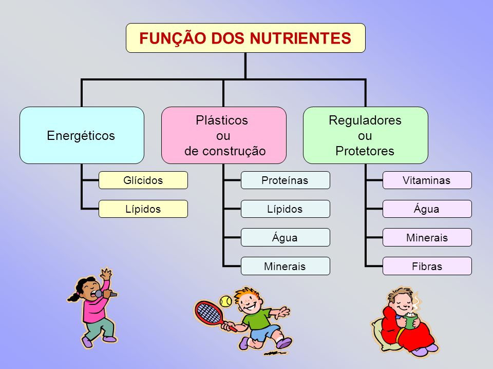 FUNÇÃO DOS NUTRIENTES Energéticos Plásticos ou de construção