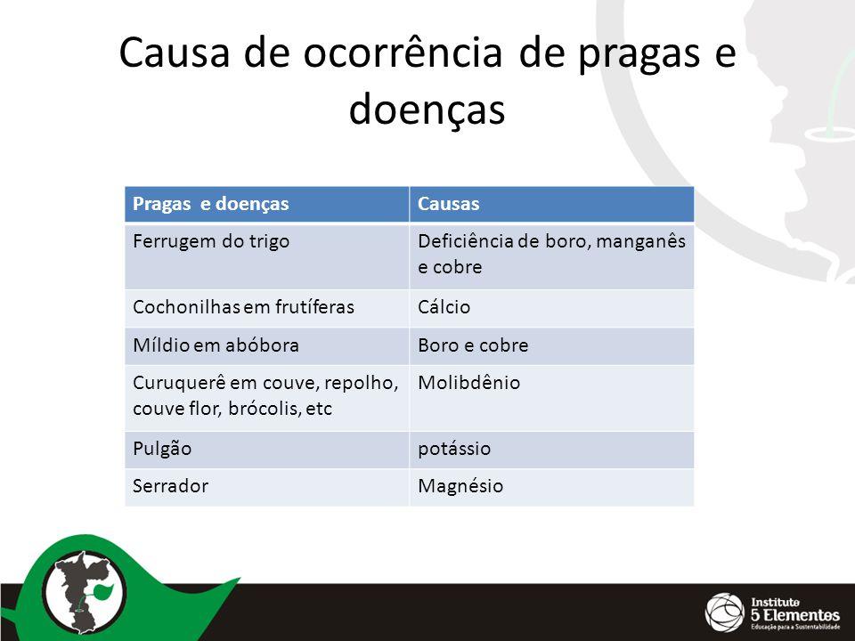 Causa de ocorrência de pragas e doenças