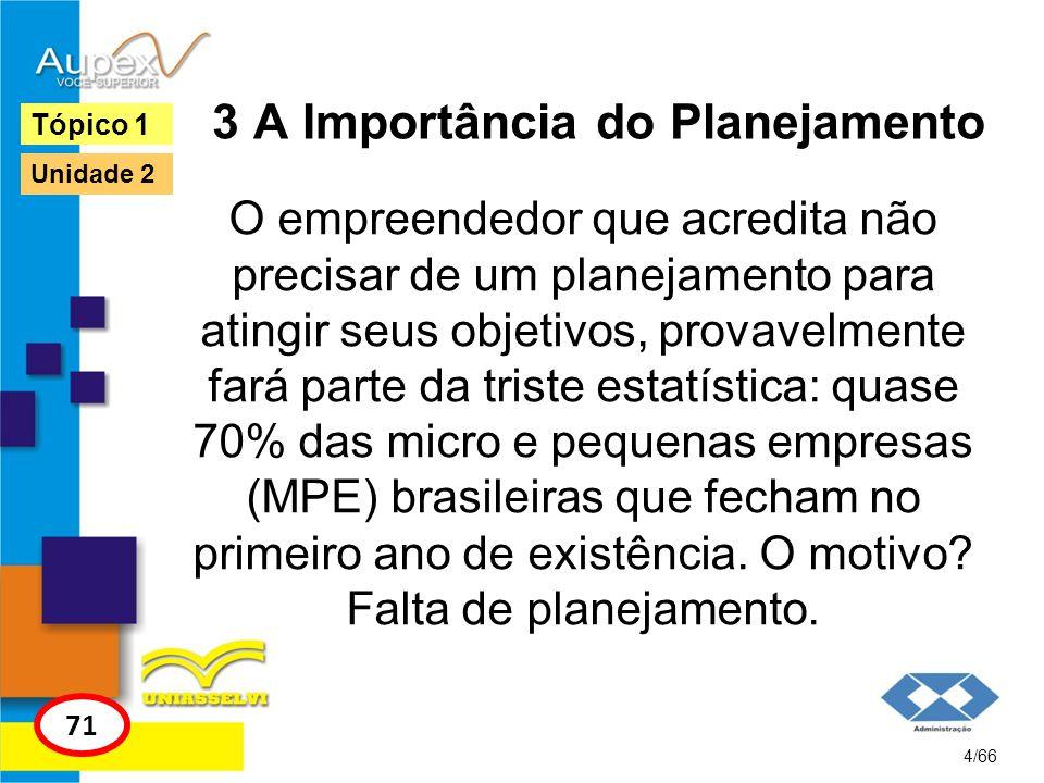 3 A Importância do Planejamento
