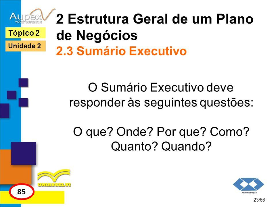 2 Estrutura Geral de um Plano de Negócios 2.3 Sumário Executivo