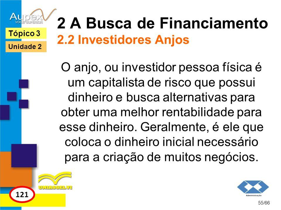 2 A Busca de Financiamento 2.2 Investidores Anjos