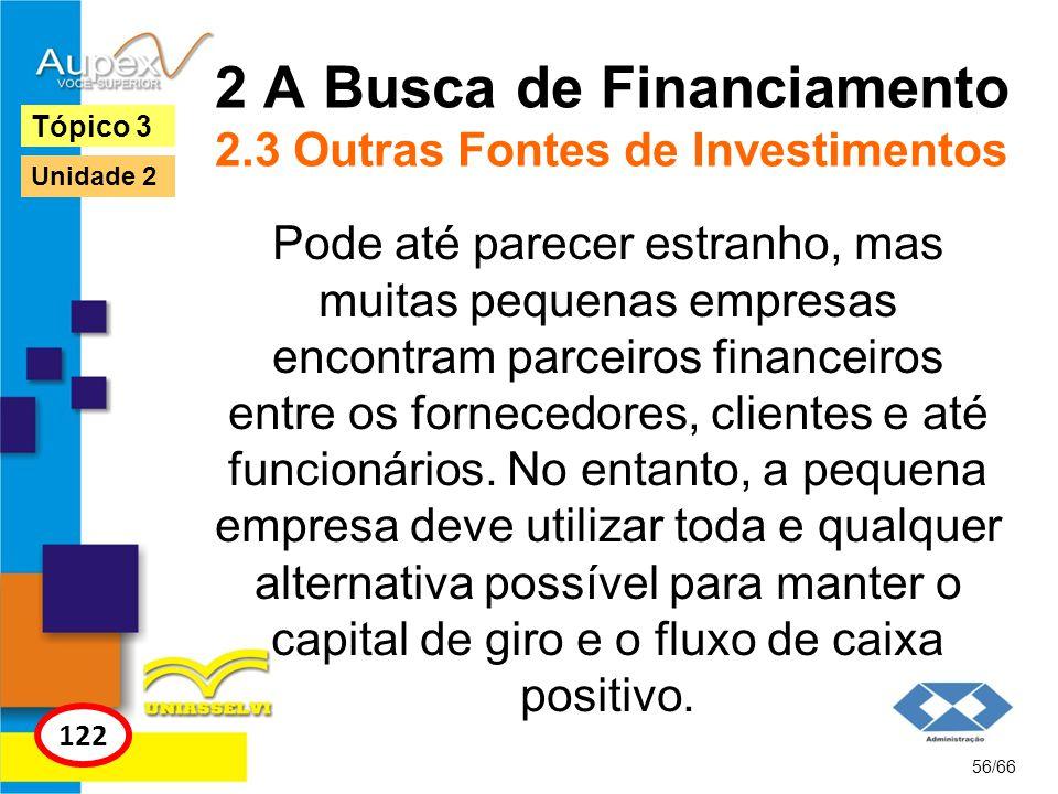 2 A Busca de Financiamento 2.3 Outras Fontes de Investimentos