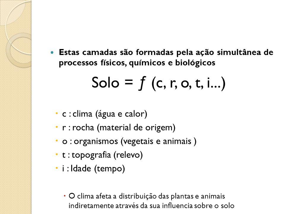 Solo = ƒ (c, r, o, t, i...) c : clima (água e calor)