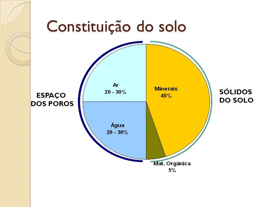 Constituição do solo SÓLIDOS DO SOLO ESPAÇO DOS POROS