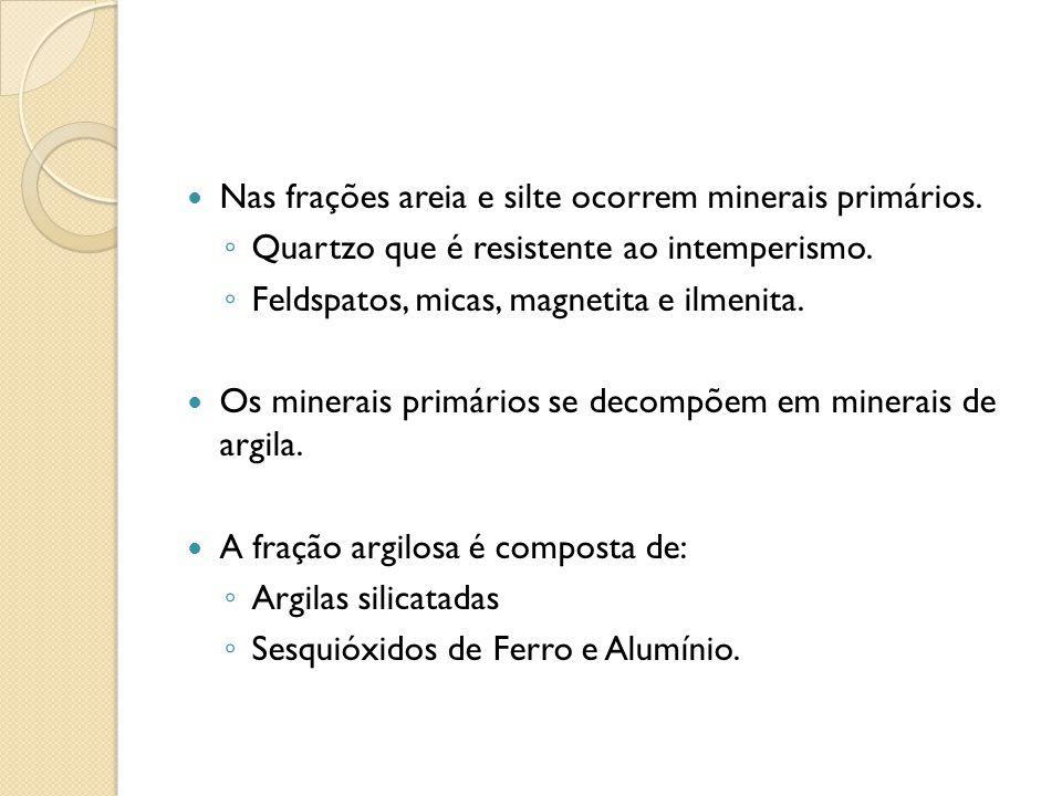 Nas frações areia e silte ocorrem minerais primários.