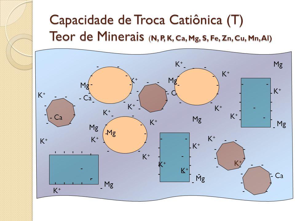 Capacidade de Troca Catiônica (T) Teor de Minerais (N, P, K, Ca, Mg, S, Fe, Zn, Cu, Mn, Al)