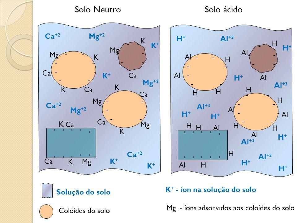 Solo Neutro Solo ácido Ca+2 Mg+2 H+ Al+3 K - - - - - - H K+ - - - -