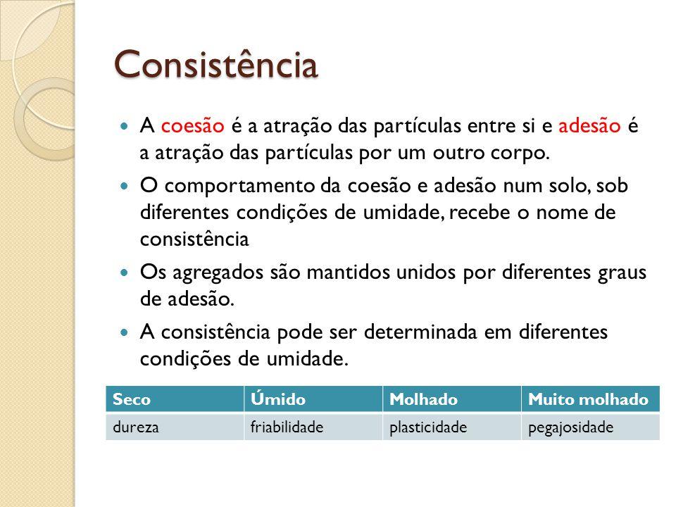Consistência A coesão é a atração das partículas entre si e adesão é a atração das partículas por um outro corpo.