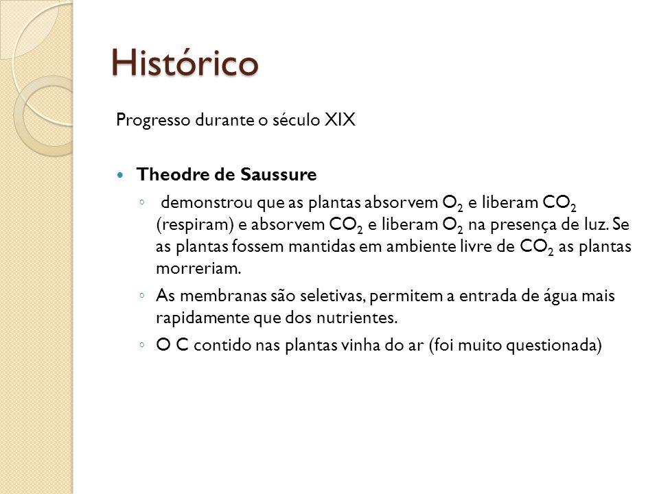 Histórico Progresso durante o século XIX Theodre de Saussure