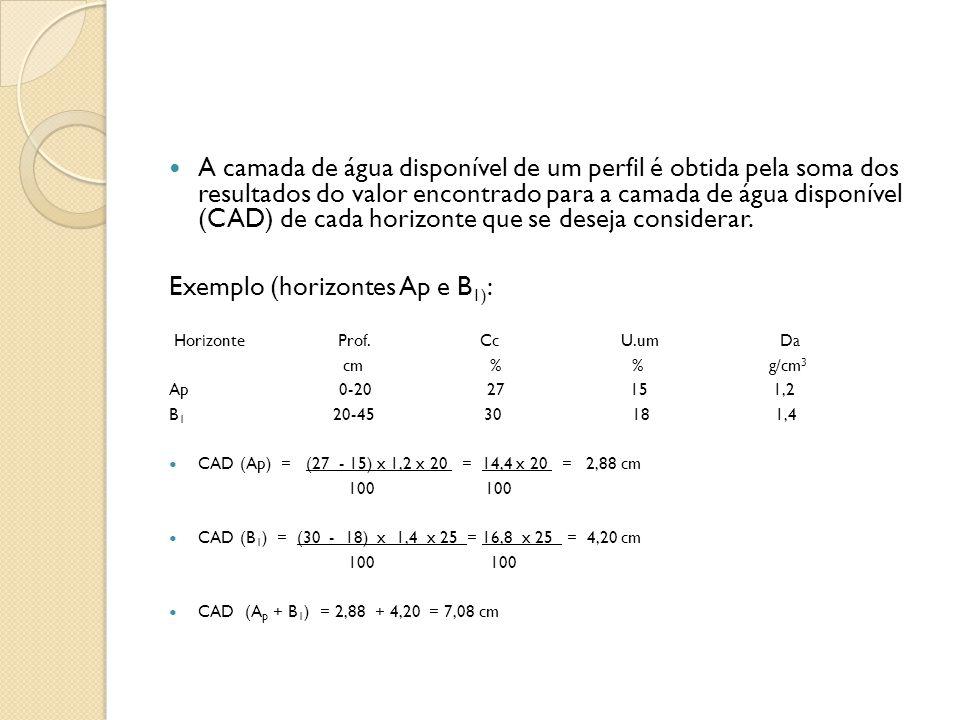 Exemplo (horizontes Ap e B1):
