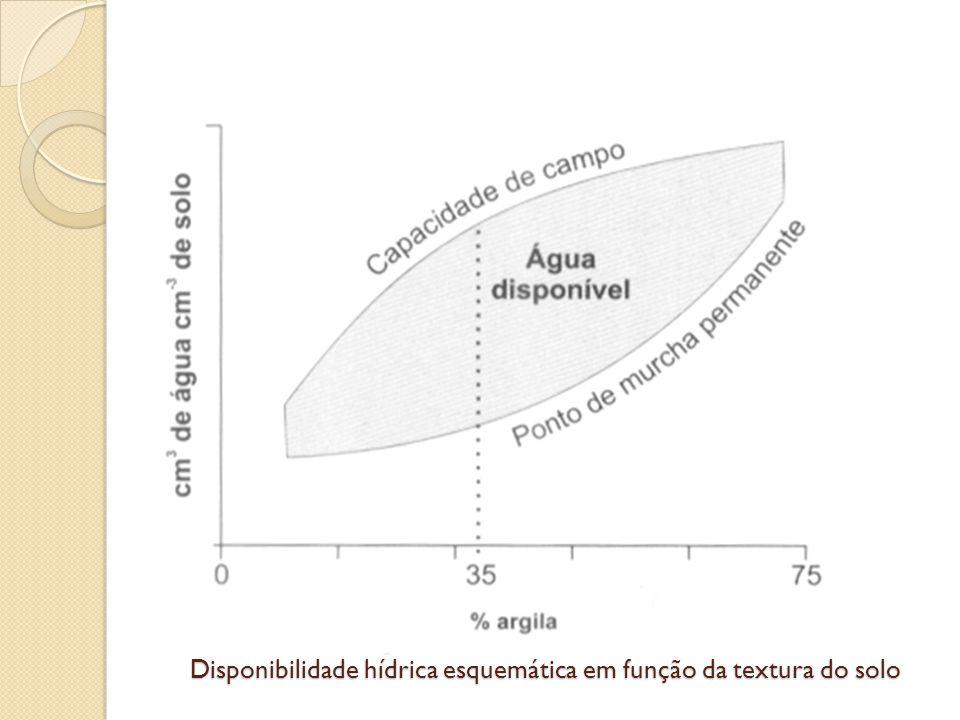 Disponibilidade hídrica esquemática em função da textura do solo