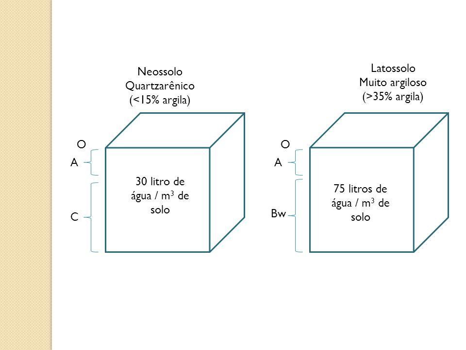 Neossolo Quartzarênico (<15% argila)