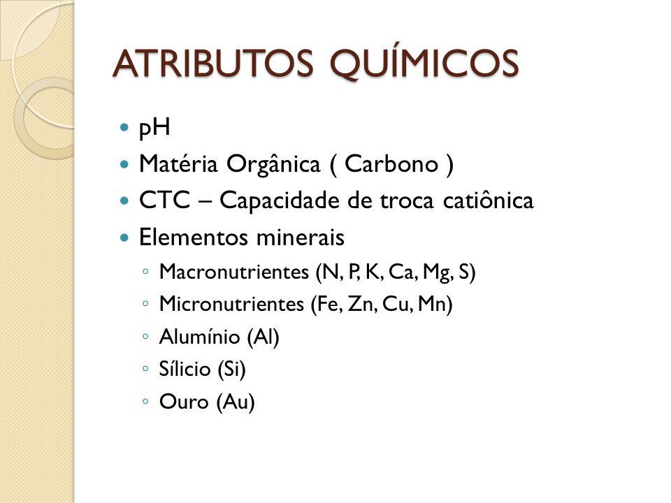 ATRIBUTOS QUÍMICOS pH Matéria Orgânica ( Carbono )