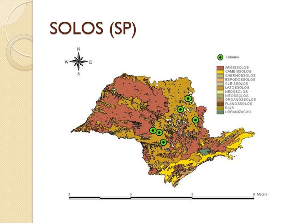 SOLOS (SP)