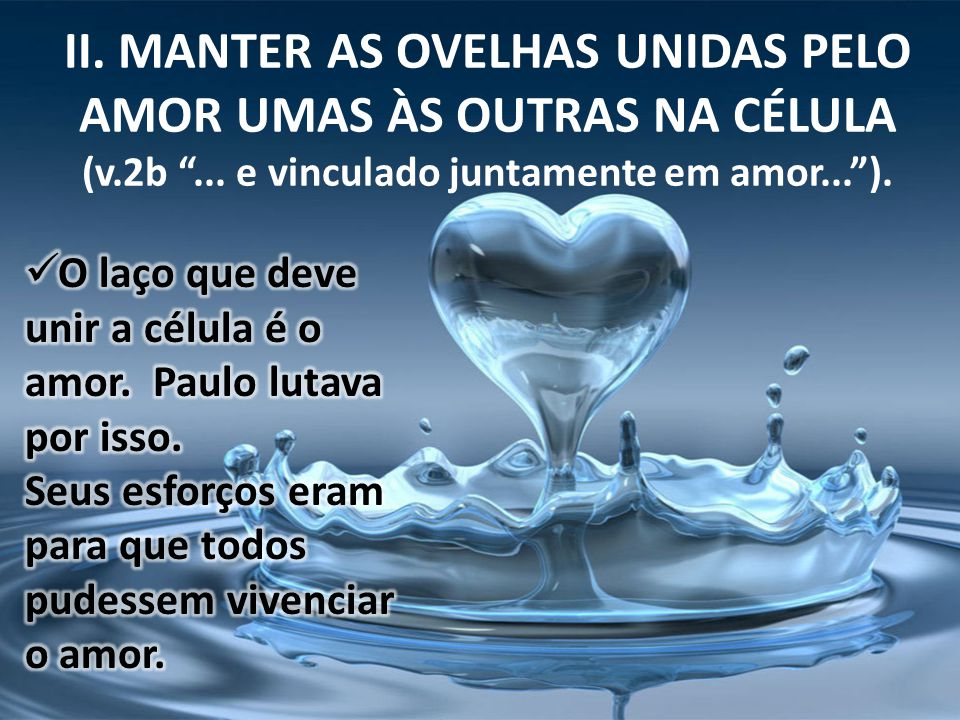 II. MANTER AS OVELHAS UNIDAS PELO AMOR UMAS ÀS OUTRAS NA CÉLULA (v